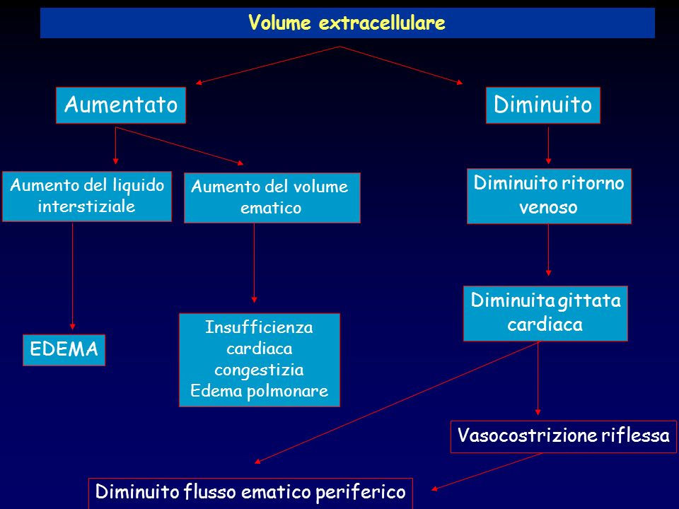Volume extracellulare