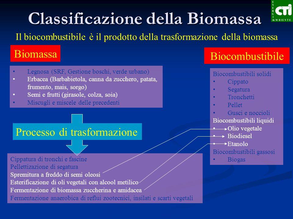 Classificazione della Biomassa