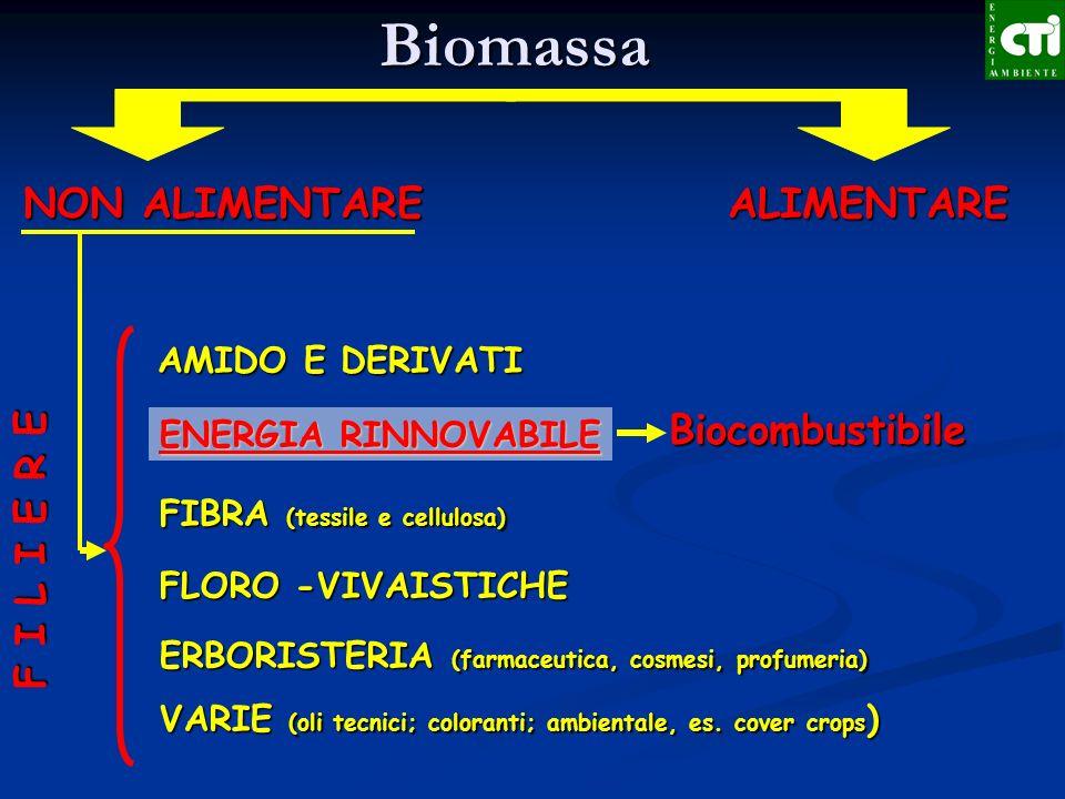 Biomassa NON ALIMENTARE ALIMENTARE Biocombustibile F I L I E R E
