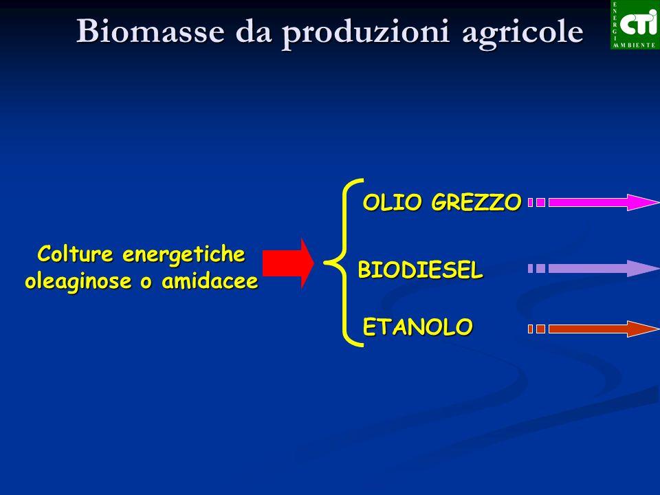 Biomasse da produzioni agricole