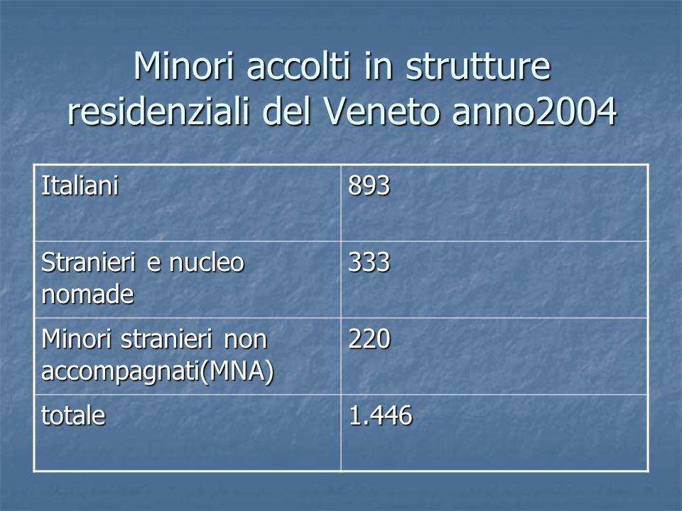 Minori accolti in strutture residenziali del Veneto anno2004