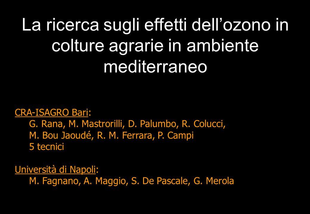 La ricerca sugli effetti dell'ozono in colture agrarie in ambiente mediterraneo