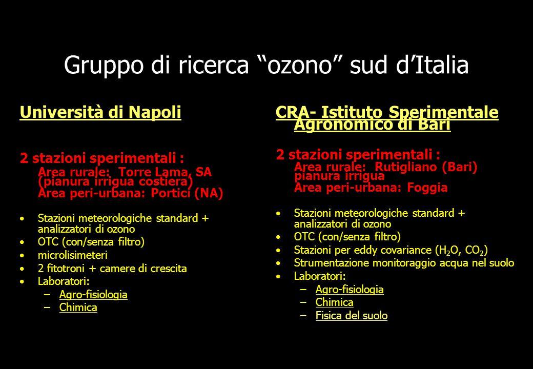 Gruppo di ricerca ozono sud d'Italia
