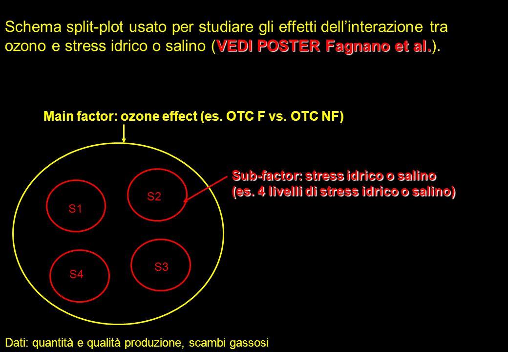 Schema split-plot usato per studiare gli effetti dell'interazione tra ozono e stress idrico o salino (VEDI POSTER Fagnano et al.).