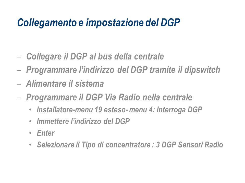 Collegamento e impostazione del DGP