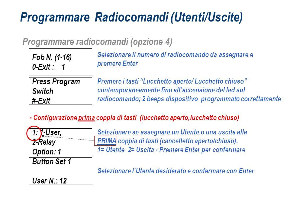 Programmare Radiocomandi (Utenti/Uscite)