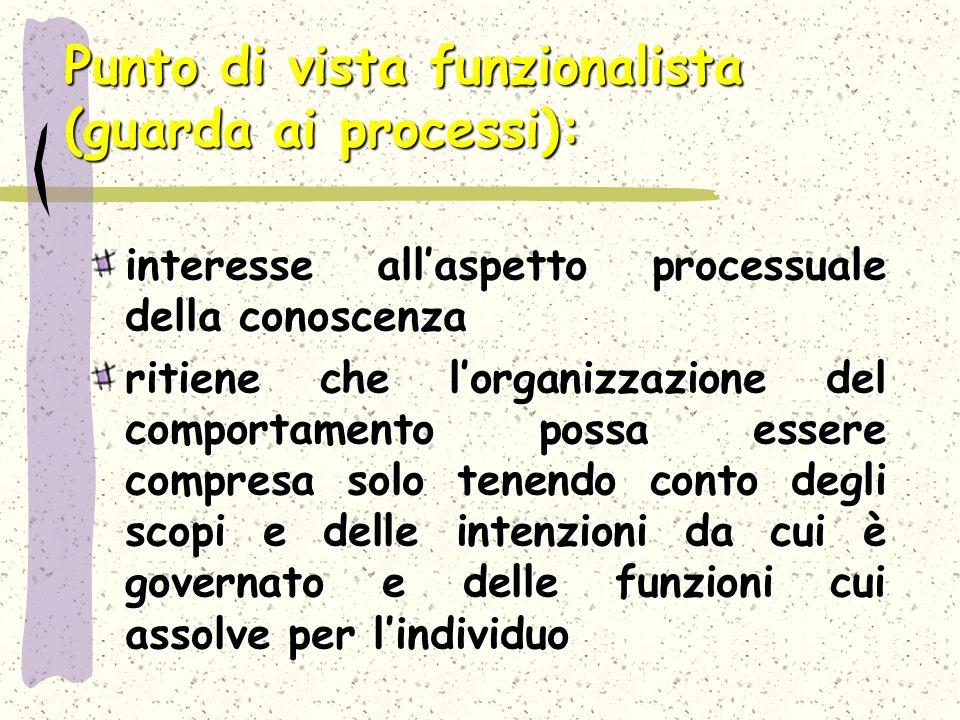 Punto di vista funzionalista (guarda ai processi):