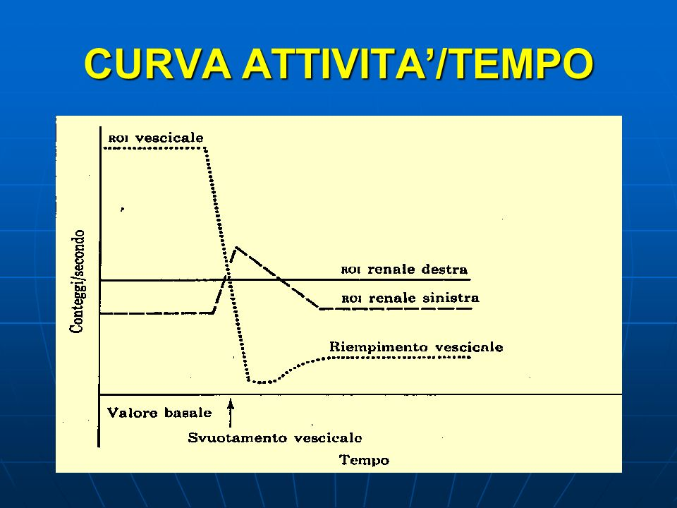 CURVA ATTIVITA'/TEMPO