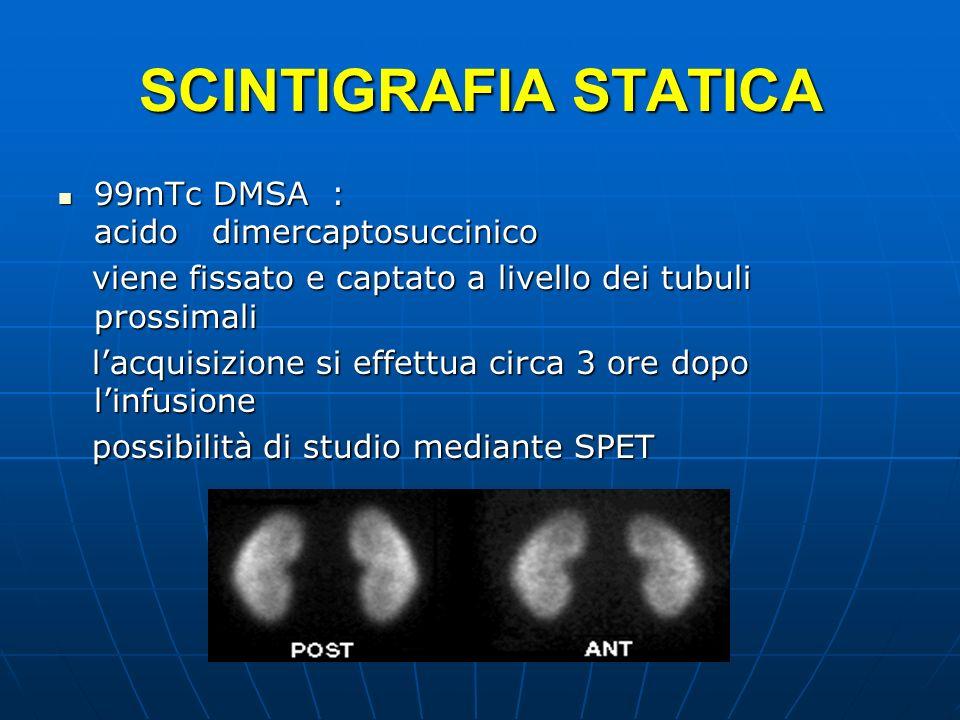 SCINTIGRAFIA STATICA 99mTc DMSA : acido dimercaptosuccinico