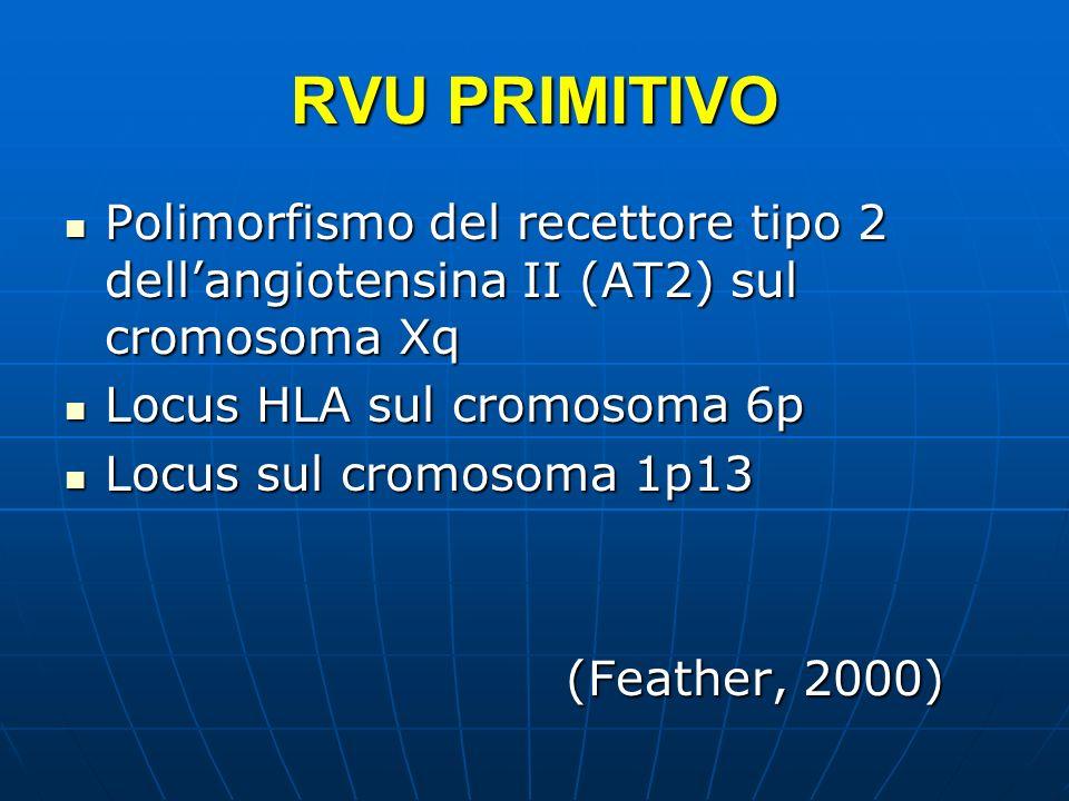 RVU PRIMITIVO Polimorfismo del recettore tipo 2 dell'angiotensina II (AT2) sul cromosoma Xq. Locus HLA sul cromosoma 6p.