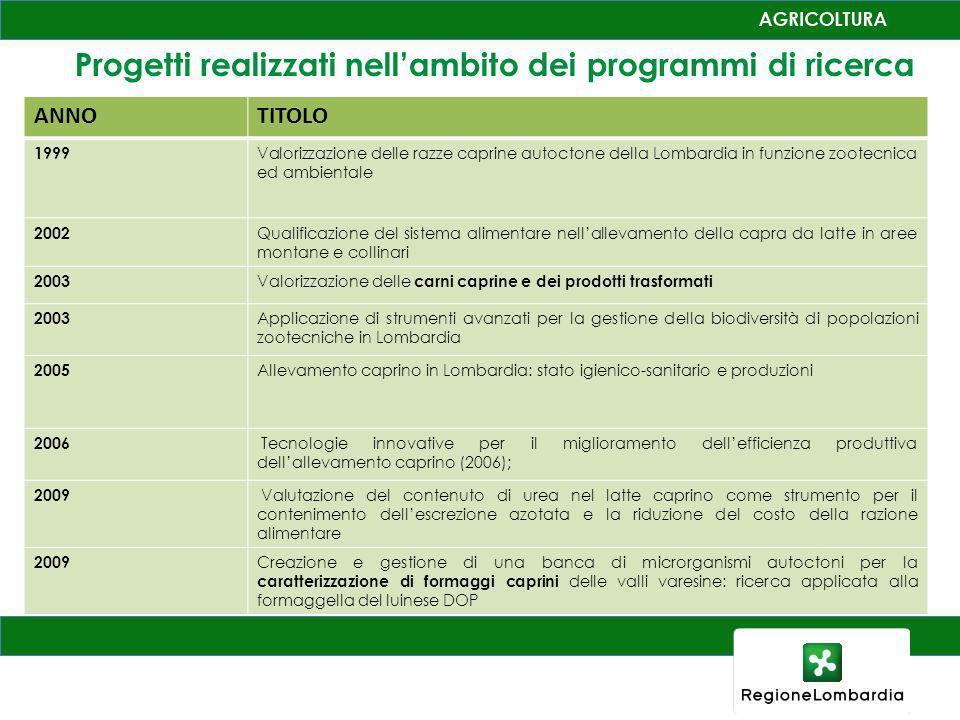 Progetti realizzati nell'ambito dei programmi di ricerca