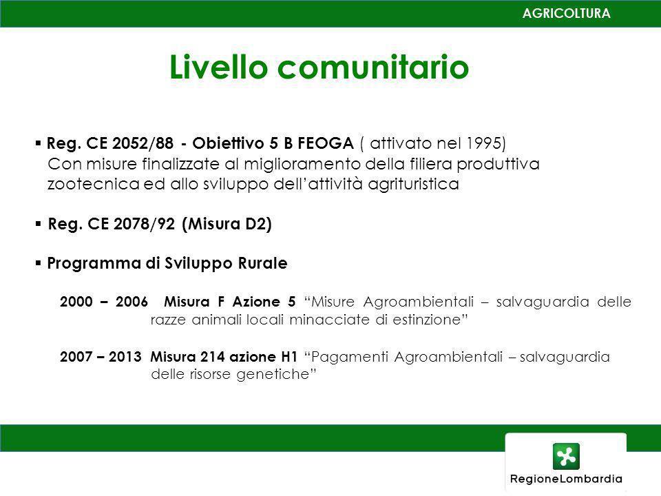 Livello comunitario Reg. CE 2052/88 - Obiettivo 5 B FEOGA ( attivato nel 1995)