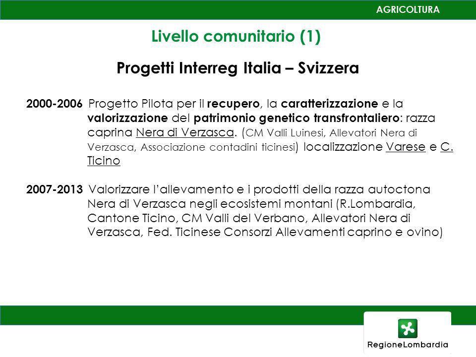 Livello comunitario (1) Progetti Interreg Italia – Svizzera