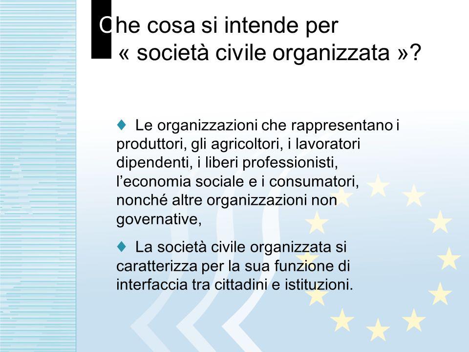 Che cosa si intende per « società civile organizzata »