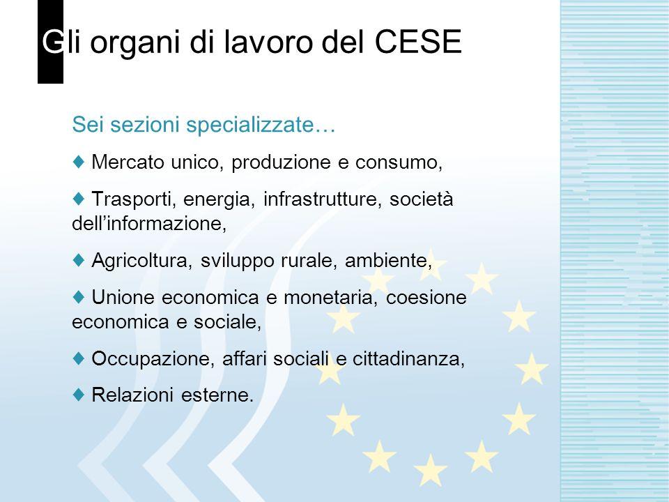 Gli organi di lavoro del CESE