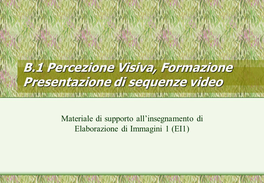 B.1 Percezione Visiva, Formazione Presentazione di sequenze video