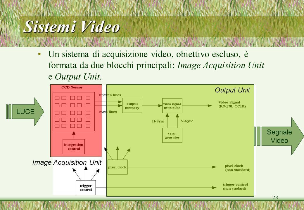 Sistemi Video Un sistema di acquisizione video, obiettivo escluso, è formata da due blocchi principali: Image Acquisition Unit e Output Unit.