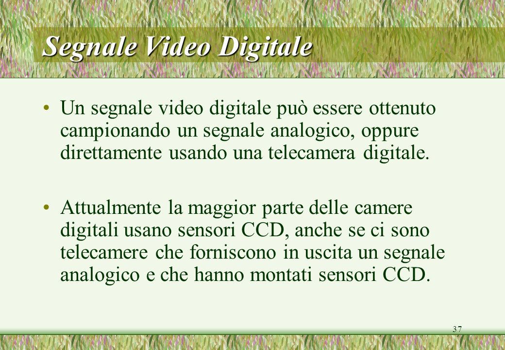 Segnale Video Digitale