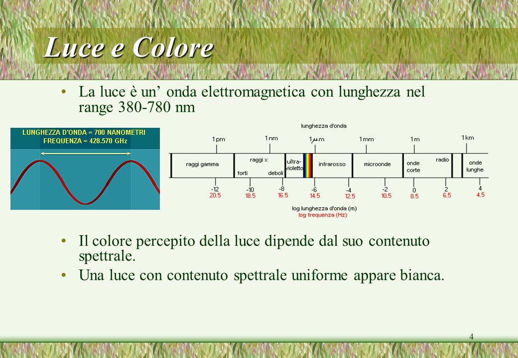 Luce e ColoreLa luce è un' onda elettromagnetica con lunghezza nel range 380-780 nm.