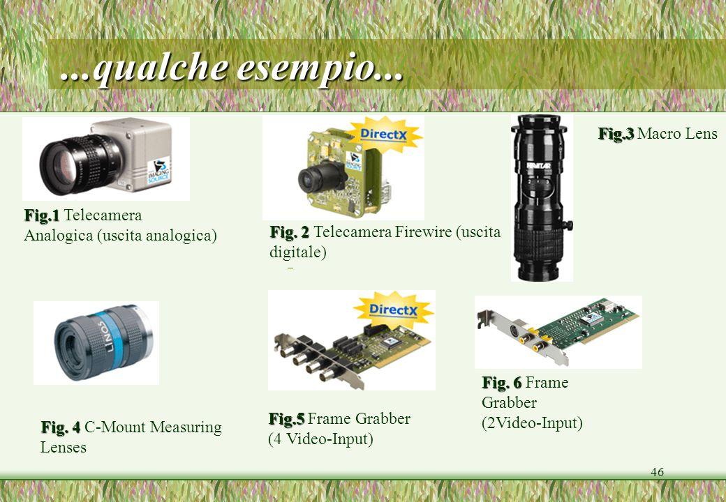 ...qualche esempio... Fig.3 Macro Lens Fig.1 Telecamera
