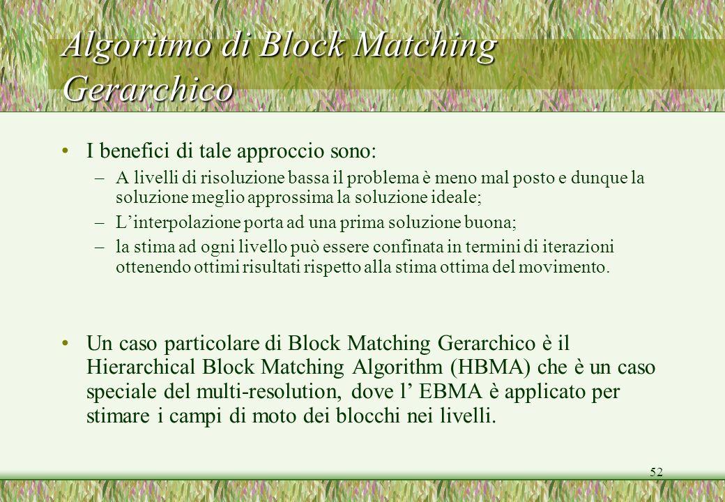 Algoritmo di Block Matching Gerarchico