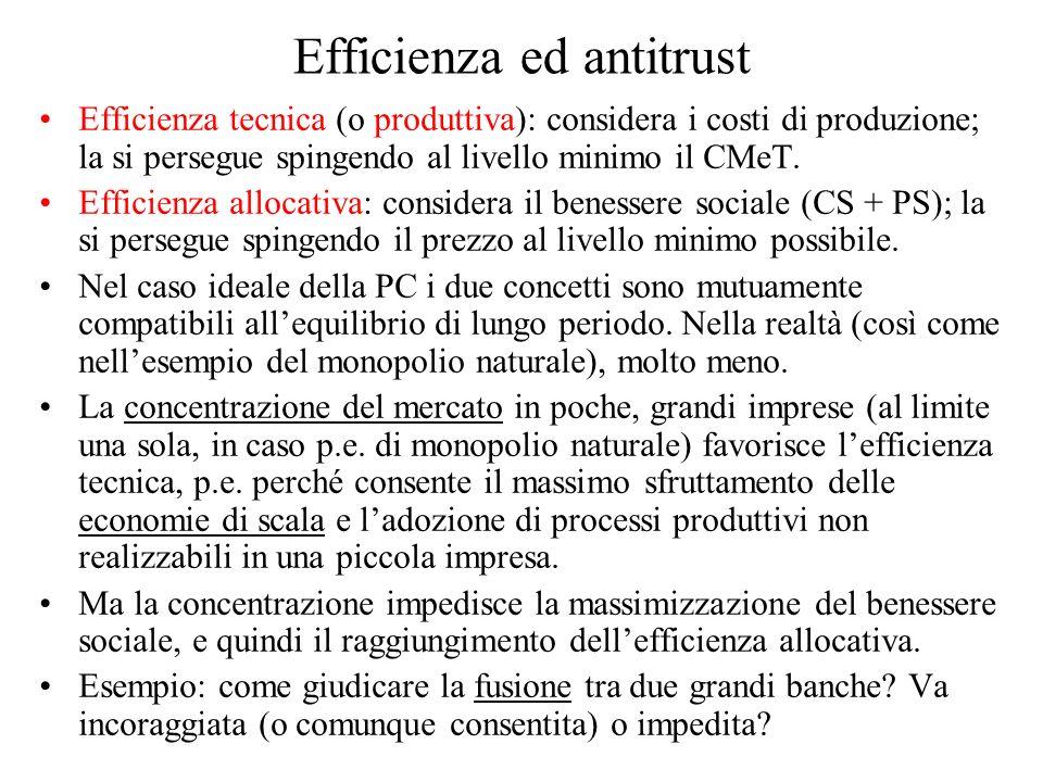 Efficienza ed antitrust