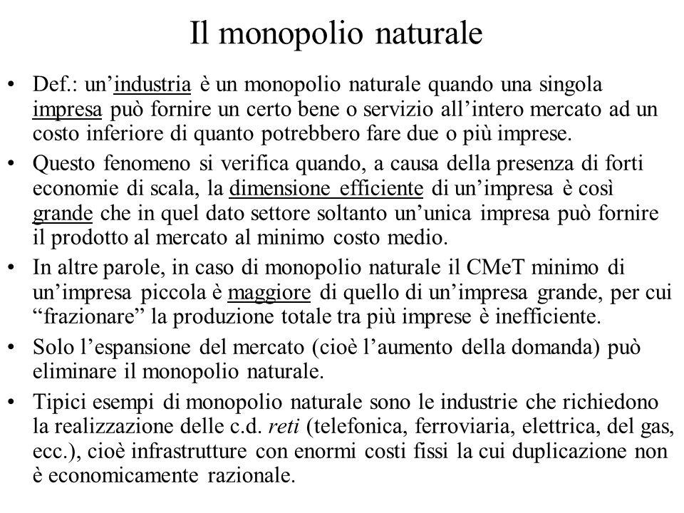 Il monopolio naturale