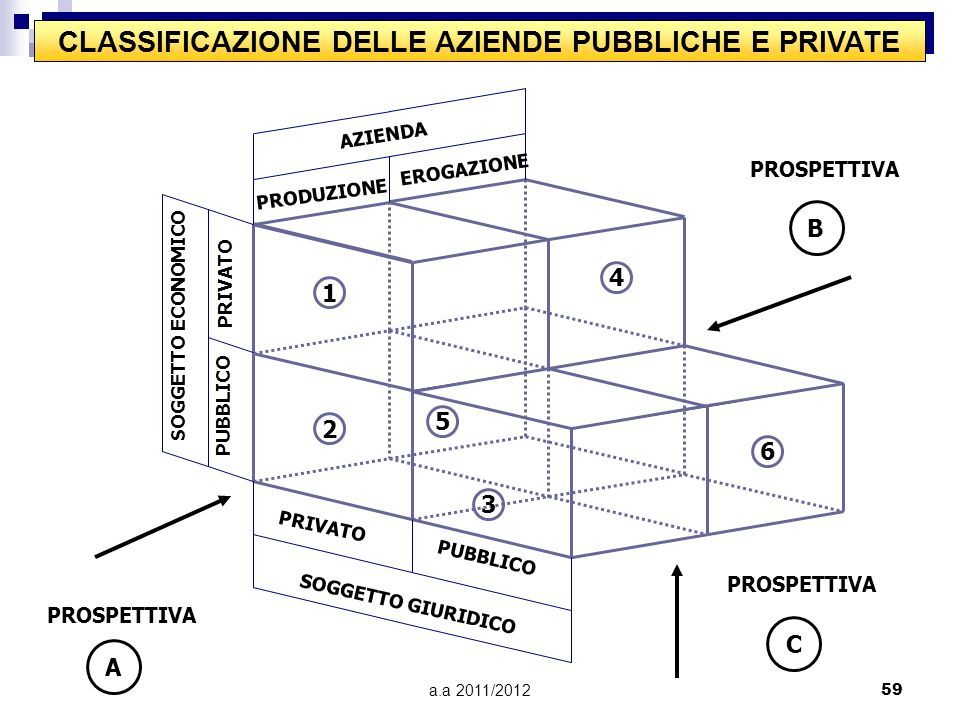 CLASSIFICAZIONE DELLE AZIENDE PUBBLICHE E PRIVATE
