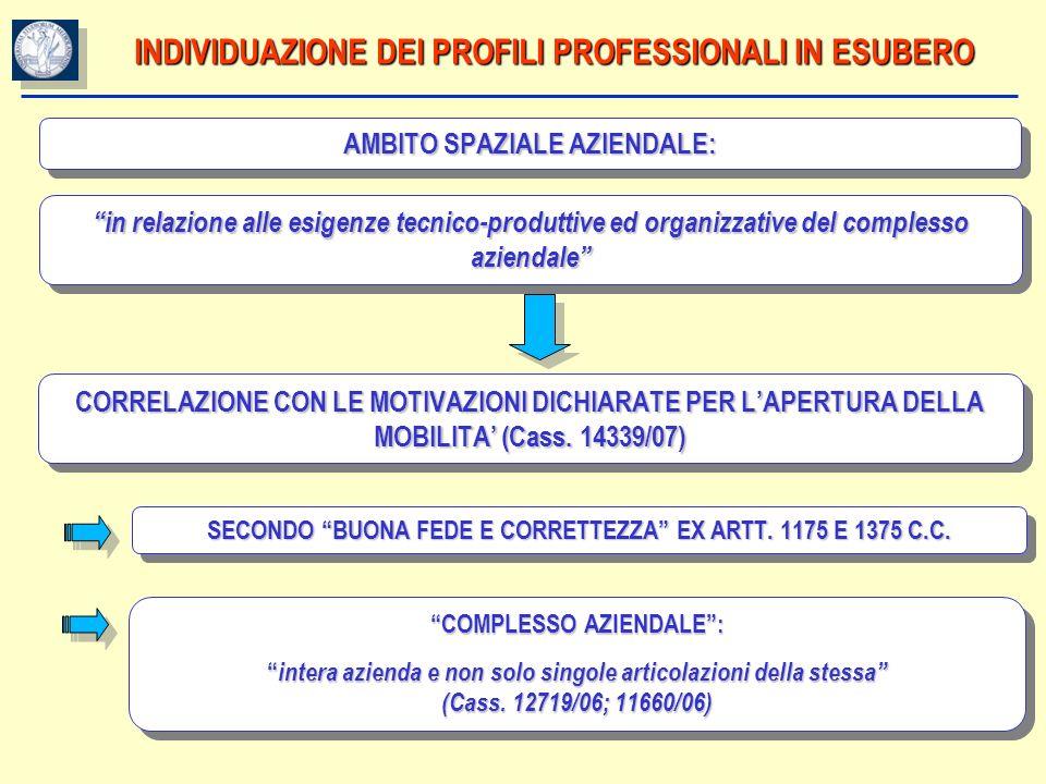 INDIVIDUAZIONE DEI PROFILI PROFESSIONALI IN ESUBERO
