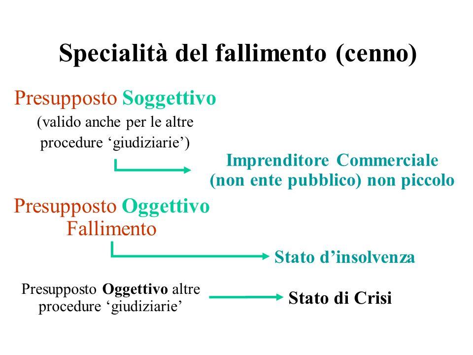 Specialità del fallimento (cenno)