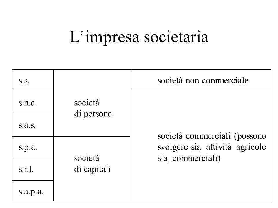 L'impresa societaria s.s. società non commerciale s.n.c. società