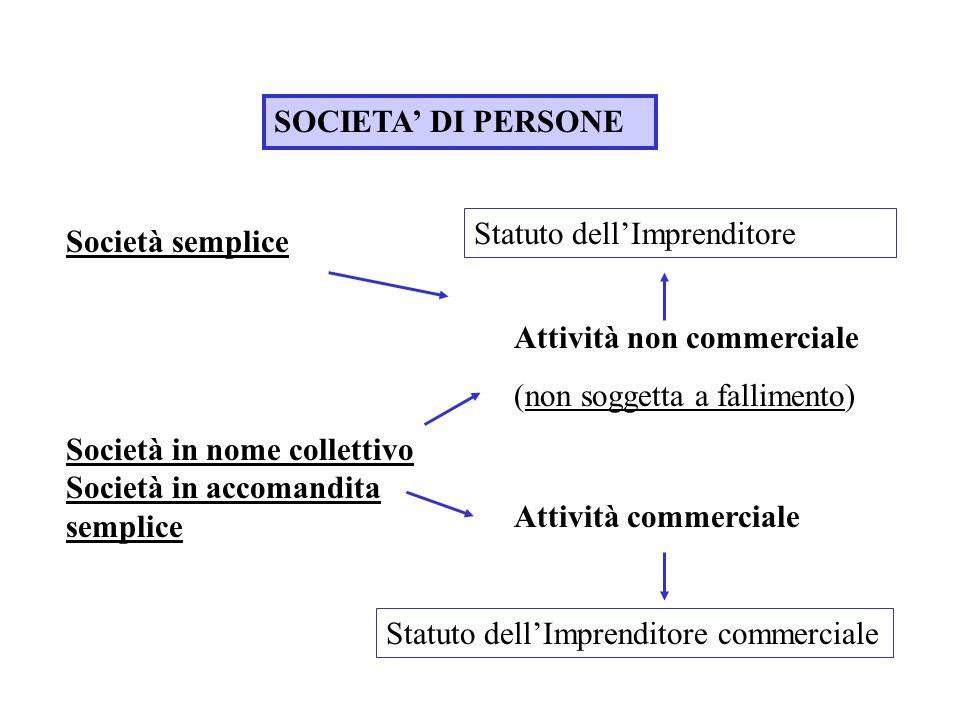 SOCIETA' DI PERSONE Statuto dell'Imprenditore. Società semplice. Attività non commerciale. (non soggetta a fallimento)