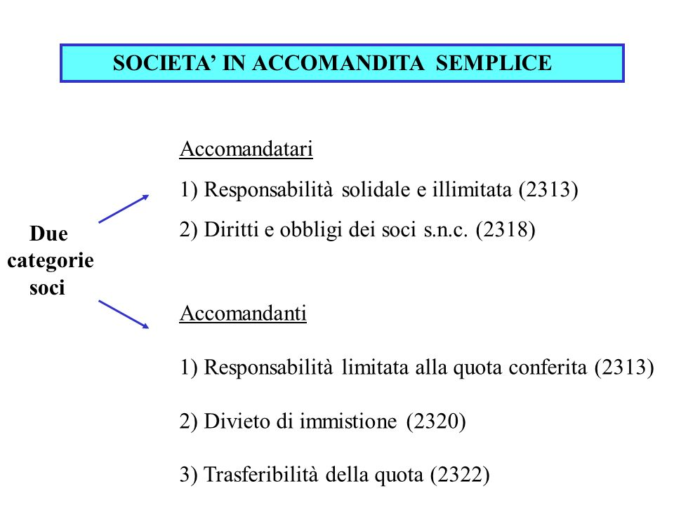 SOCIETA' IN ACCOMANDITA SEMPLICE