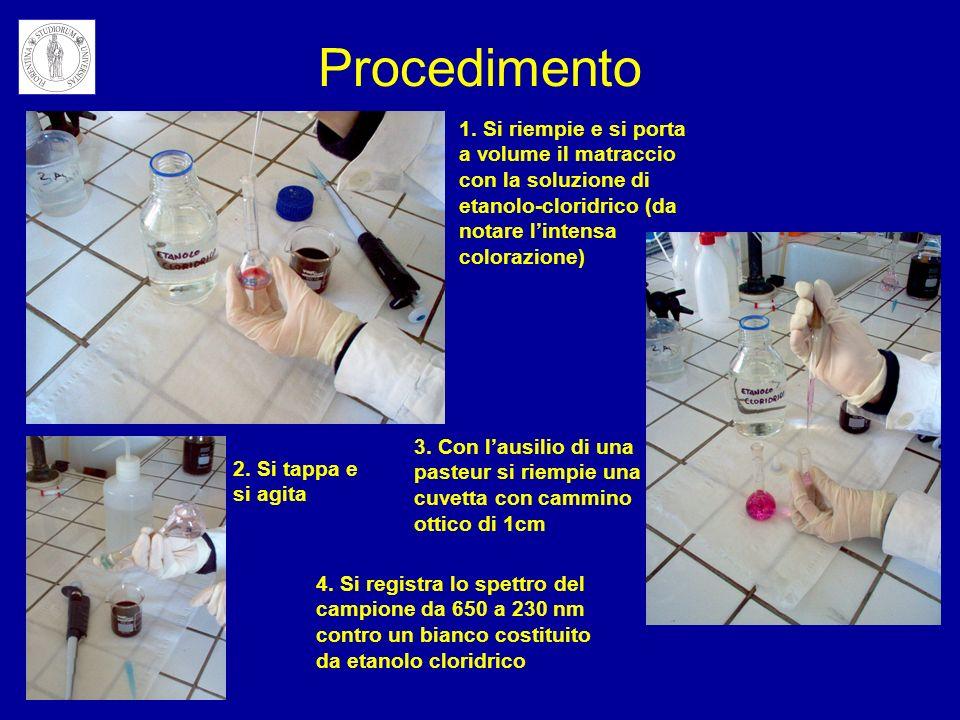 Procedimento 1. Si riempie e si porta a volume il matraccio con la soluzione di etanolo-cloridrico (da notare l'intensa colorazione)