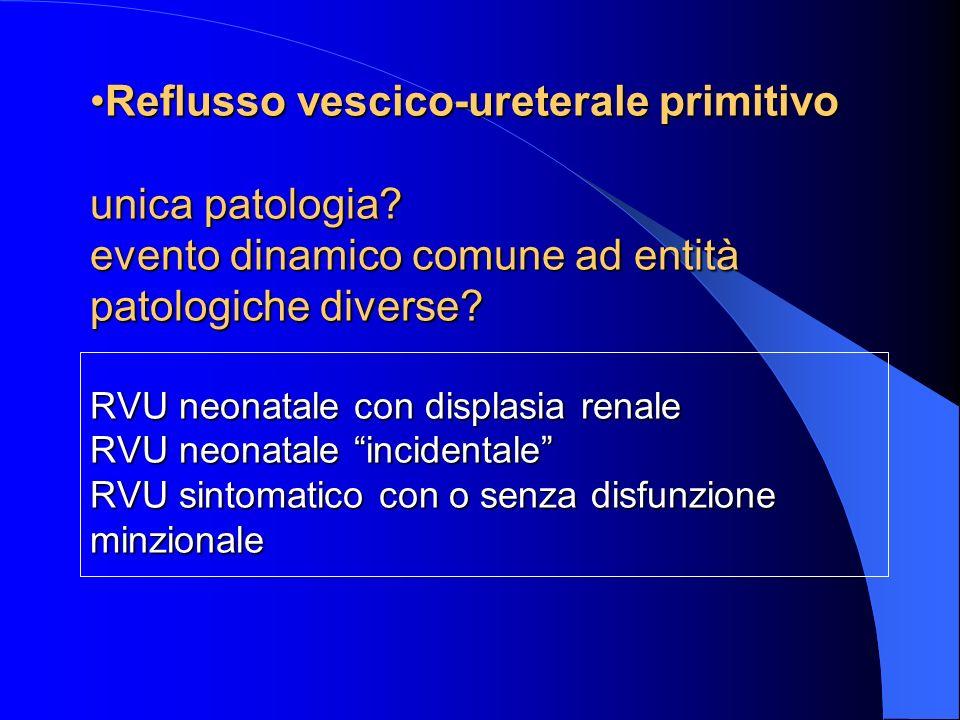 Reflusso vescico-ureterale primitivo unica patologia
