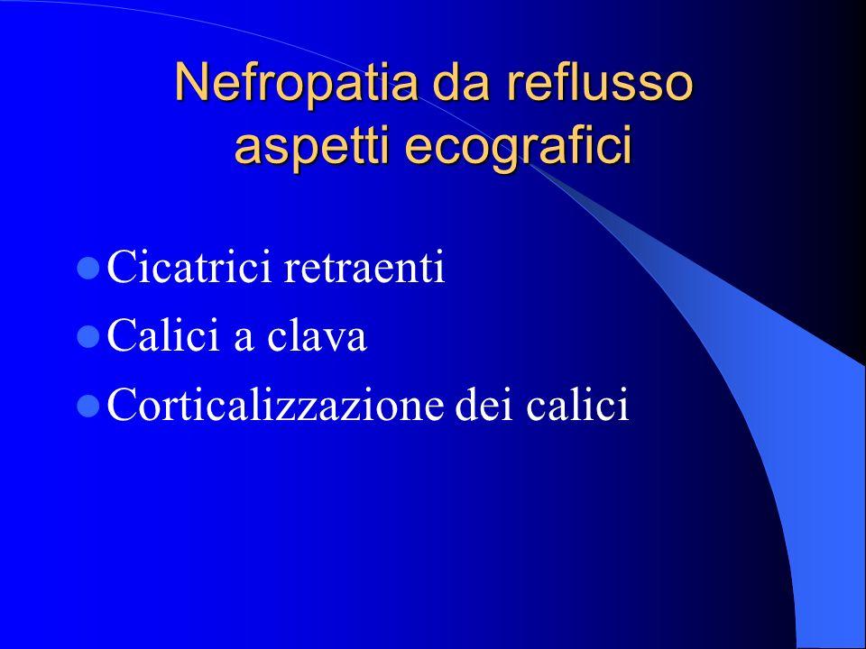 Nefropatia da reflusso aspetti ecografici