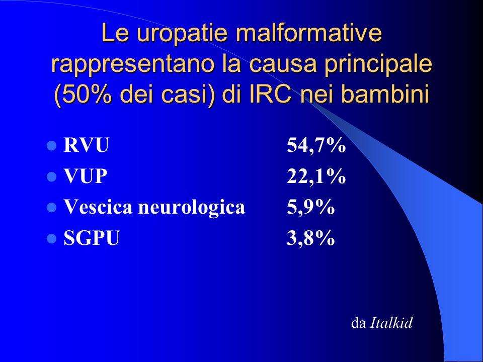 Le uropatie malformative rappresentano la causa principale (50% dei casi) di IRC nei bambini