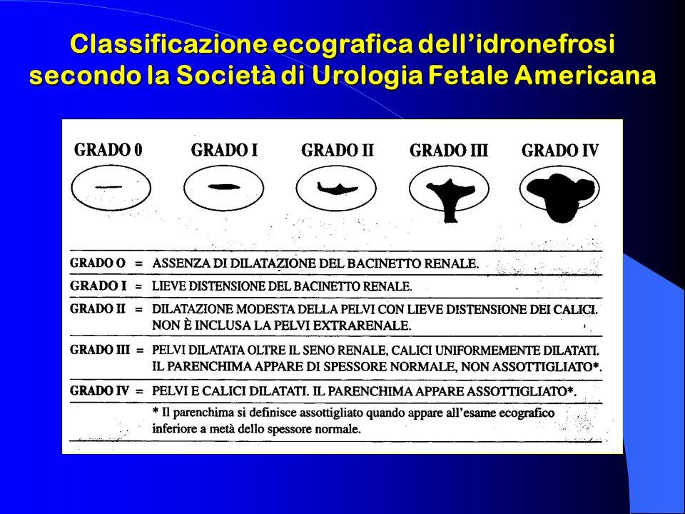 Classificazione ecografica dell'idronefrosi
