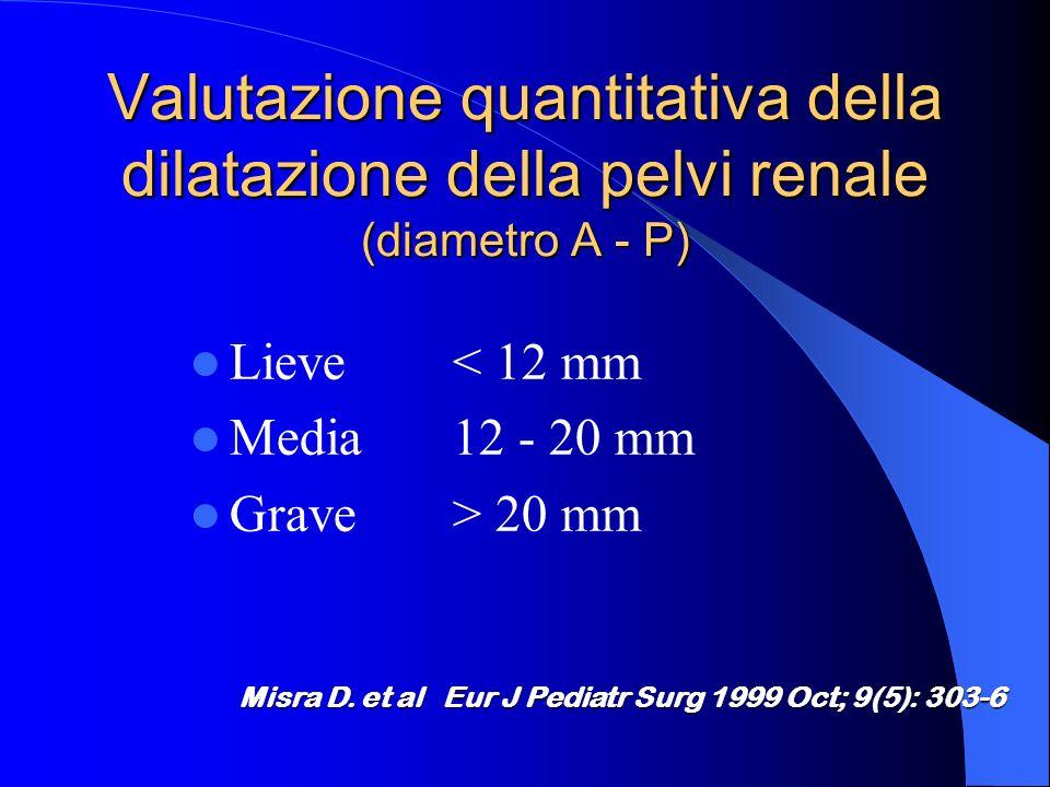 Valutazione quantitativa della dilatazione della pelvi renale (diametro A - P)