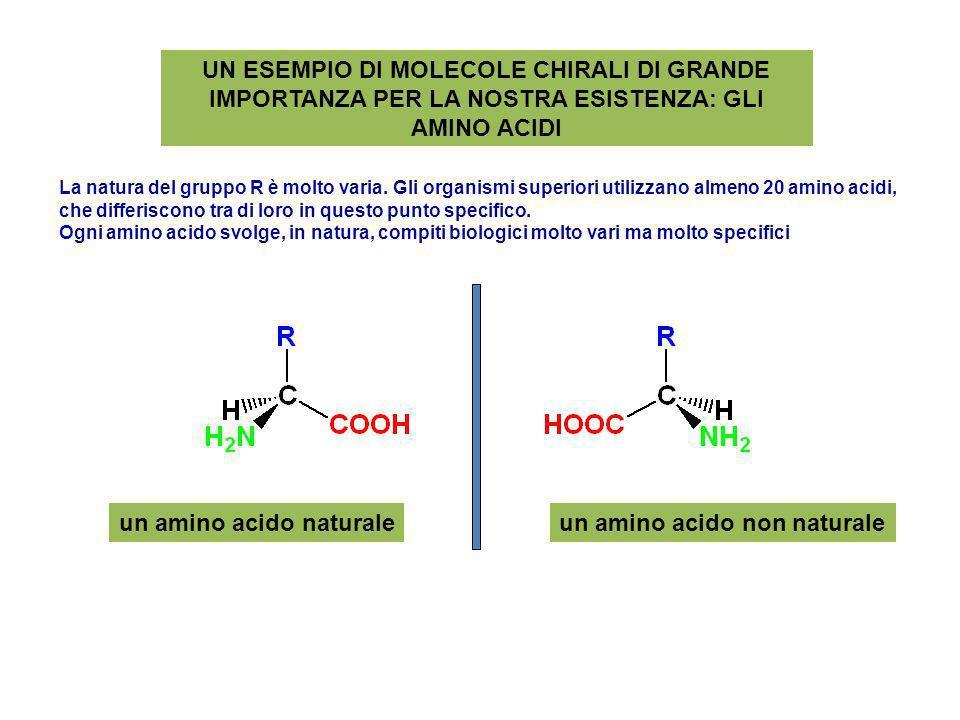 un amino acido naturale un amino acido non naturale