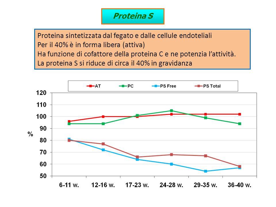 Proteina S Proteina sintetizzata dal fegato e dalle cellule endoteliali. Per il 40% è in forma libera (attiva)