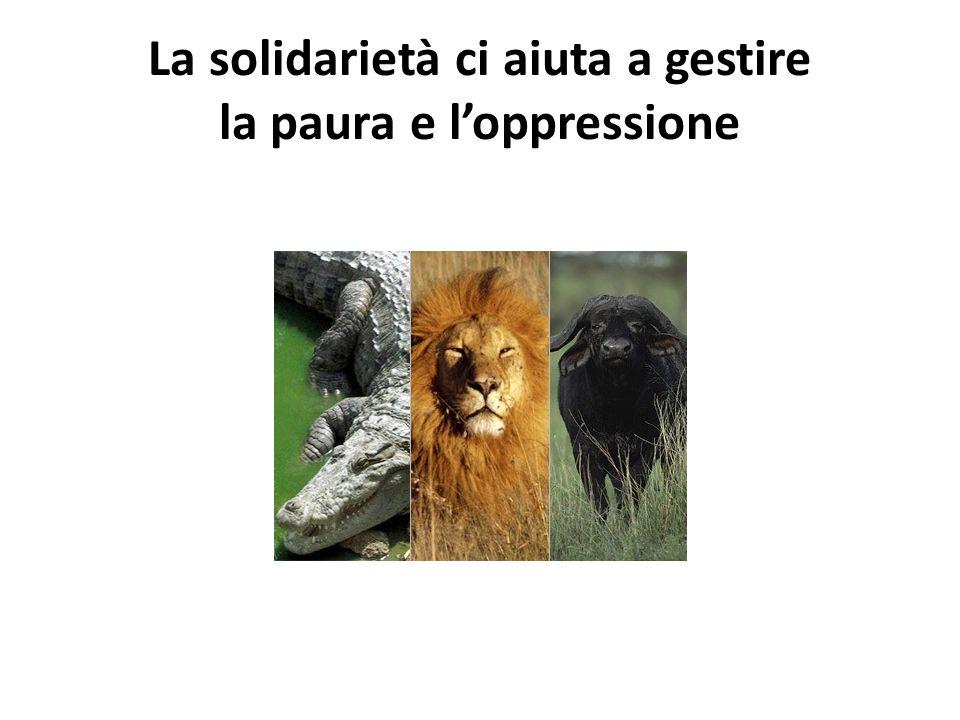 La solidarietà ci aiuta a gestire la paura e l'oppressione