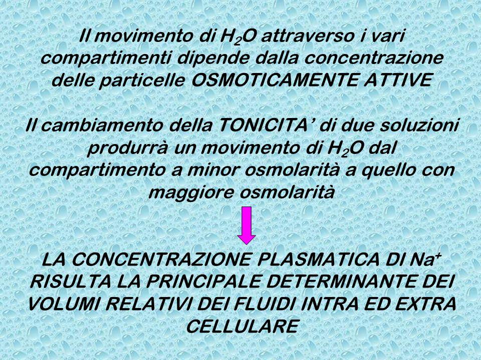 Il movimento di H2O attraverso i vari compartimenti dipende dalla concentrazione delle particelle OSMOTICAMENTE ATTIVE Il cambiamento della TONICITA' di due soluzioni produrrà un movimento di H2O dal compartimento a minor osmolarità a quello con maggiore osmolarità LA CONCENTRAZIONE PLASMATICA DI Na+ RISULTA LA PRINCIPALE DETERMINANTE DEI VOLUMI RELATIVI DEI FLUIDI INTRA ED EXTRA CELLULARE