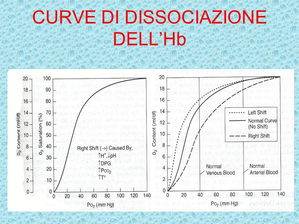 CURVE DI DISSOCIAZIONE DELL'Hb