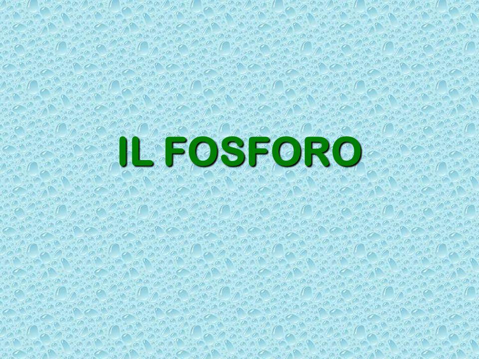 IL FOSFORO