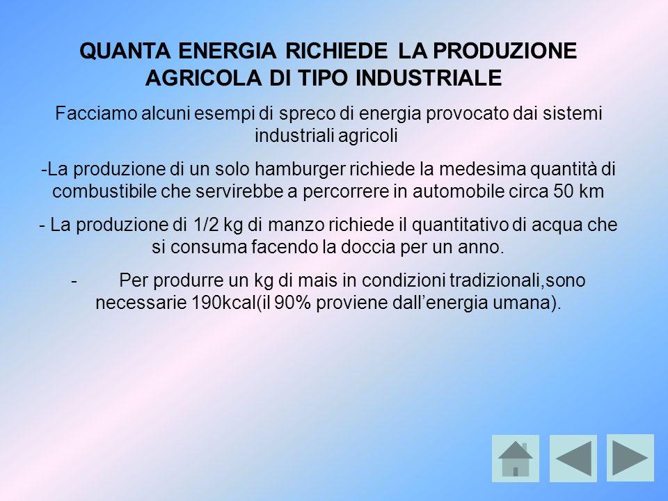 QUANTA ENERGIA RICHIEDE LA PRODUZIONE AGRICOLA DI TIPO INDUSTRIALE