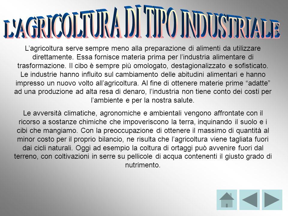 L AGRICOLTURA DI TIPO INDUSTRIALE