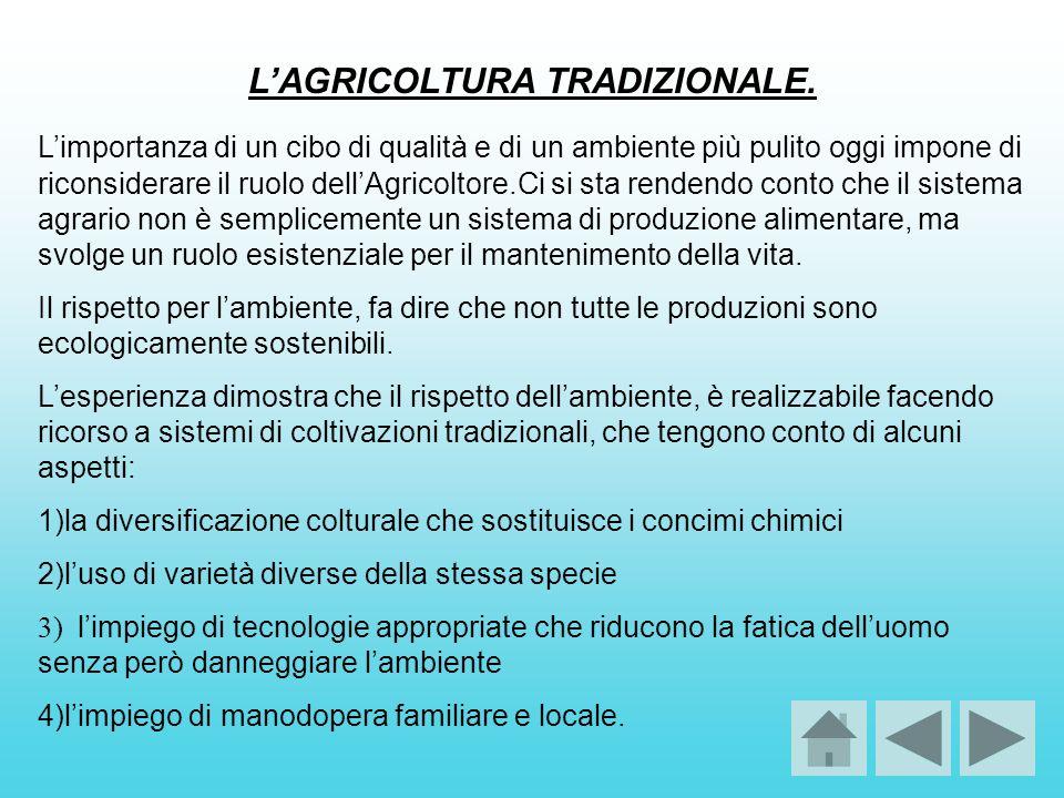 L'AGRICOLTURA TRADIZIONALE.