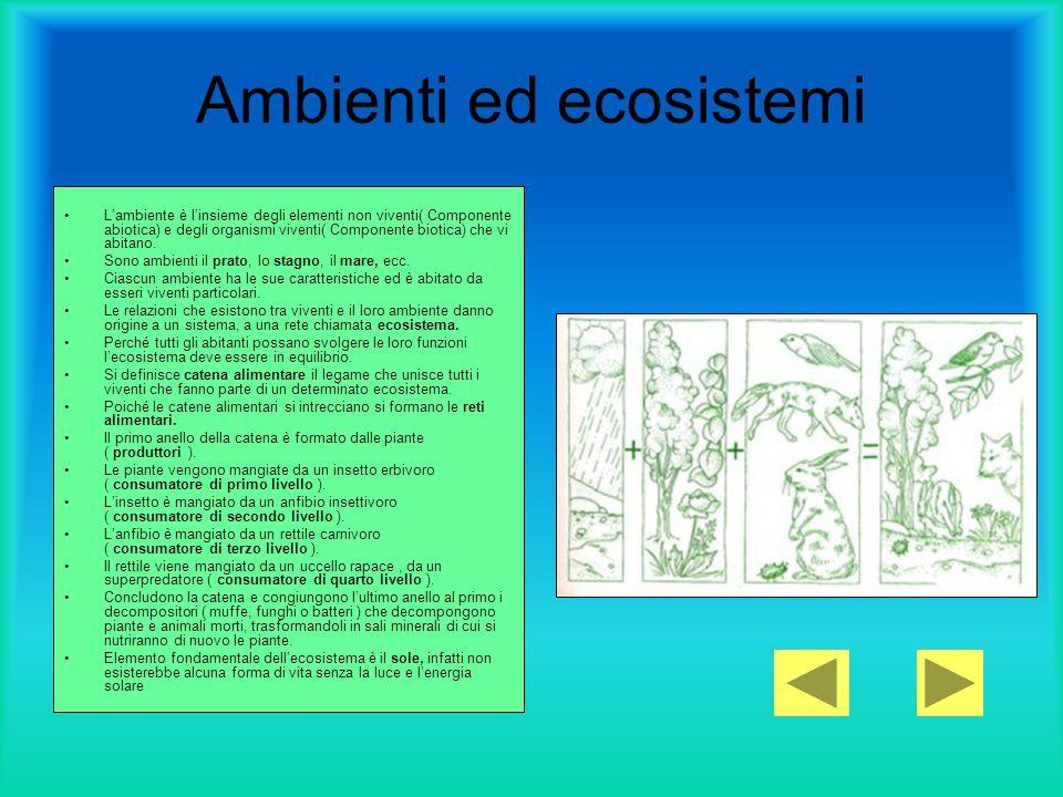 Ambienti ed ecosistemi