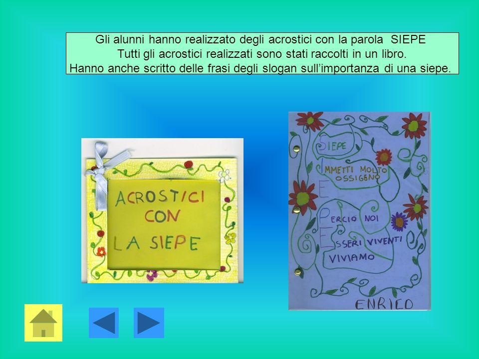 Gli alunni hanno realizzato degli acrostici con la parola SIEPE